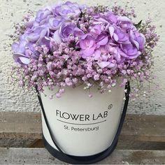 #פרחים #הזמנות #משלוחים #ישראל #מותג #פרמיום #