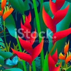 red heliconia and morpho butterfly royalty-free stock vector art