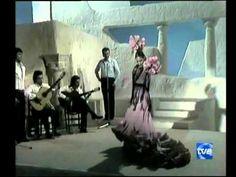 Baile Milagros Menjibar - Alegrias.wmv