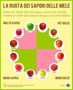 La ruota dei sapori delle mele
