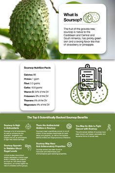 Don't be a soursop, eat one! Learn all about this anti-inflammatory, antibacterial, and anti-cancer wonder fruit! Soursop Benefits, Fruit Benefits, Health Facts, Health Tips, Health And Wellness, Health Diary, Healthy Fruits, Healthy Life, Anti Oxidant Foods