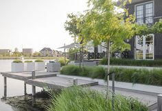 www.buytengewoon.nl Bart Bolier - tuinarchitect ontwerp@buytengew... tuinontwerp - tuinrealisatie Belgian Style, Landscape Architecture, Mid-century Modern, Garden Design, Mid Century, Patio, Modern Gardens, Places, Outdoor Decor