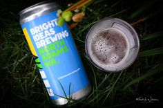 Bright Idea Brewing IPA.  My wife and I were in Vermont last weekend to pick-up our daughter Kiran from a summer retreat. This was the return trip from our first trip a few weeks ago. We also decided we would use the opportunity to do some college touring with our son Shaan at Williams College in Williamstown Massachusetts.  Once again we decided that doing the trip in one day would be too tiring so we booked a room in North Adams Massachusetts and drove to the college campus the next day…