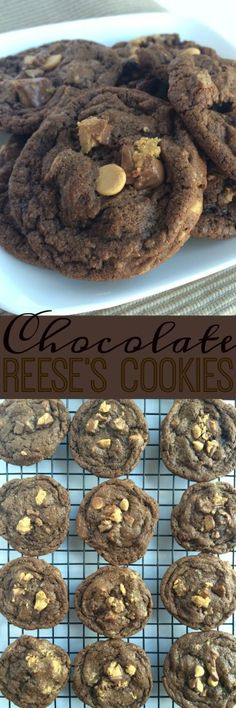 Rich chocolate cookies packed full of peanut butter chips & Reese's miniatures! These Chocolate Reese's Cookies are sure to please everyone! Cookie Desserts, Fun Desserts, Cookie Recipes, Delicious Desserts, Candy Recipes, Galletas Cookies, Reese's Cookies, Sugar Cookies, Christmas Cookies