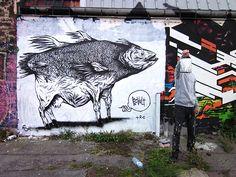 Son blase est Bault et c'est en 1997, à Sète, qu'il débute dans le graffiti avec DEPOSE. Avec ce dernier ils créent le crew TK. Un style spécial, une véritable patte et de drôles de créatures sorties tout droit de son imagination, c'est la marque de fabrique Bault. Lors de ses études à Avignon, Bault rencontre MEZO, ...