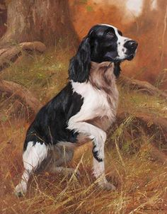 Explore our site for even more relevant information on hunting dogs. It is an excellent spot to read more. Wildlife Paintings, Wildlife Art, Animal Paintings, Hunting Art, Hunting Dogs, Hunting Drawings, Spaniel Dog, Springer Spaniel, Crazy Dog Lady