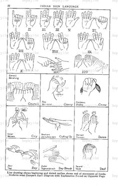 Native American sign language: Illustrated guides to 400 gestures - Click Americana Indian Sign Language, Sign Language Chart, Sign Language Words, Sign Language Alphabet, Learn Sign Language, Baby Sign Language, American Sign Language, Sms Language, Native American Wisdom