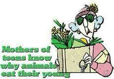 Gosh these remind me of my mom! She loves her some Maxine!