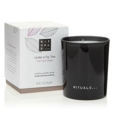 Under A Fig Tree | RITUALS Scented candle