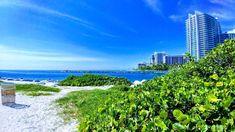 Flo Rida, Beach Fun, Vineyard, Amazing, Outdoor, Instagram, Outdoors, Vine Yard, Vineyard Vines