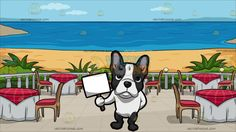 A French Bulldog Holding A Cardboard Sign With A Restaurant Patio Overlooking The Ocean Background :  A small dog with dark gray and white short fur pinkish standing ears frowns while holding a white cardboard with a brown stick handle in his front right paw his front left paw is hidden behind his back and A patio with a blue sea view beige sand green plants five round tables wrapped in white and red cloth brown chairs with red cushion