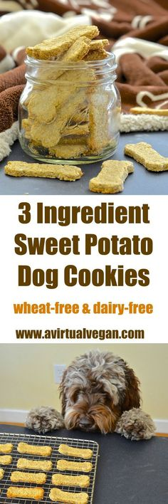 Sweet Potato Dog Cookies! | *MADE* these were super easy and kinda delicious on their own. Very plain but in a good way. Bruno had some stomach issues early Saturday morning, so sweet potato is our go-to to help his tummy. I used the leftovers to make these treats :-)