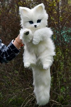 Arctic Fox, Whimsical Animals & Fantasy creatures from faux fur and polymer clay, Mystical Posable Animals toys for collectibles and decor - Cute baby animals Baby Animals Super Cute, Cute Baby Dogs, Cute Little Animals, Cute Funny Animals, Cute Puppies, Cute Cats, Cute Babies, Small Animals, Exotic Animals