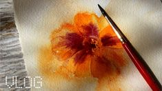Easy things to watercolor paint [marigold] - YouTube More