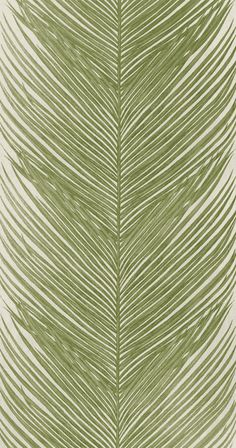 Tapet 55973: May Fern Green från Nina Campbell - Tapetorama