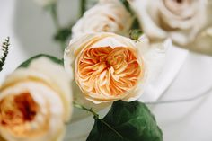 Getting ready for a wedding with these David Austin Juliet Roses @   Royal Bloom California  Photo Credit Nicole Hoefer Photography