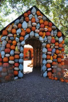 Awesome gourd house at the Dallas Arboretum http://dallas.about.com/od/arts/ig/Autumn-in-the-Arboretum/Pumpkin-Gourd-House.htm