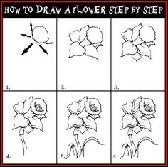 How To Draw A Flower Step By Step Drawing Guide | DARYL HOBSON ARTWORK