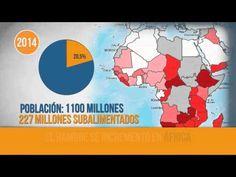 cifras sobre el hambre mundial