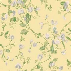 Sweet Pea by Cole & Son - Yellow - Wallpaper : Wallpaper Direct Wallpaper Door, Kitchen Wallpaper, Pattern Wallpaper, Cole Son, True Colors, Colours, Style Anglais, Sweet Pea Flowers, Backgrounds