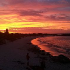 ...and then this happened.  #judetaylor #workingholiday #rottnestisland #rottnest #rottolife #westernaustralia #WAbeachesarethebest #perthlife #sunset #bliss #holidaysnearlyover #nofilter by judetaylor_wa http://ift.tt/1L5GqLp