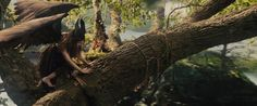 Maleificent - M 0038 - High Quality MOVIE SCREENCAPS Gallery