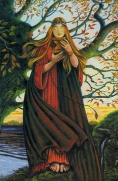 Druid Craft Tarot - Princess of Cups
