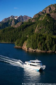 A tour boat - great way to see the waters and mountains -wildlife of the Kenai Fjords National Park - which is pretty much all of the area around Seward