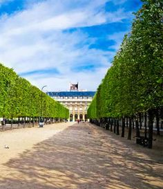Once a royal residence, the hushed arcades and manicured gardens of the Palais-Royal in Paris are now home to world-class perfumers