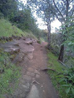 Annie Bidwell Trail, Upper Bidwell Park, Chico, CA