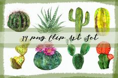 Watercolor Cactuses Clip Art Set by Tati Bordiu on @creativemarket