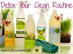 A few tips to Detox Your Spring Cleaning Routine this month! Natural and Non-toxic!