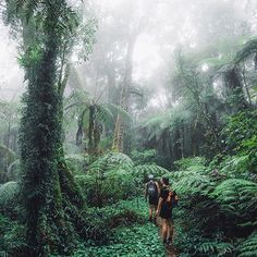 Exploring North Queensland Photo by @jasoncharleshill #modernoutdoorsman