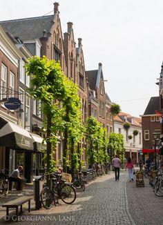 Amsterdam by Georgianna Lane