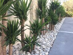 Side Yard Landscaping With Rocks ;