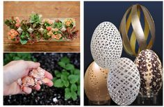 20 Unusual Uses For Eggs, Egg Shells, and Egg CartonsPositiveMed | Positive Vibrations in Health http://positivemed.com/2014/10/02/20-unusual-uses-eggs-egg-shells-egg-cartons/