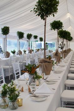 Smaller bases and more manicured foilage would make these a showstopping centrepiece very Wils and Kate wedding-esque..