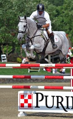 John Pearce is Two for Two at HITS Saugerties Ahead of Million Week | ProEquest The pair has won countless grand prix together and is proof that a solid bond between horse and rider play an important role in winning blue ribbons.