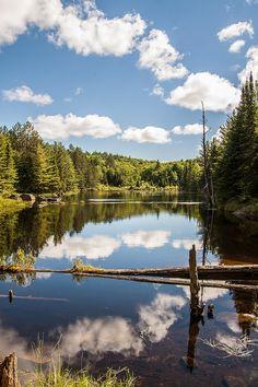 Algonquin Provincial Park . Canada