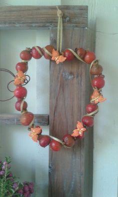 Sydän ruusunmarjoista