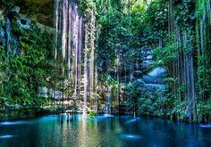 Natural swimming Pool in Yucatan Peninsula - Mexico
