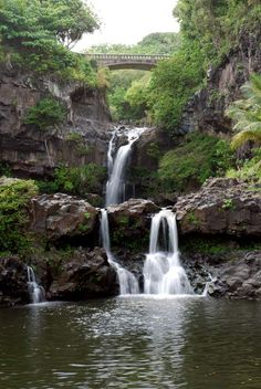 Seven Sacred Pools!  Hana, Maui HI  (I've been there...they are beautiful!)
