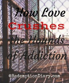 How Love Crushes the Hounds of Addiction - Redemption Diary