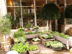 Daylesford Organic Farm shop and restaurant in London (Pimlico, near Sloane Square).