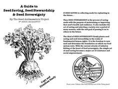 Free DIY guide teaches seed saving techniques