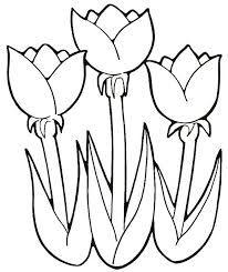 riscos e moldes de flores para patchcolagem - Pesquisa Google