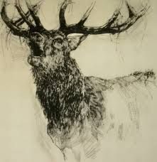 Drypoint by Emerson Mayes