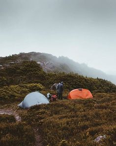 Camping up in the clouds on Valentines Peak in NW Tasmania. Image sent in by Graham K https://instagram.com/p/BQZlLJ-BfDa/