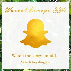 Huit 8 Lingerie and Swimwear : Want to take a sneak peek behind the scenes of our SS16 launch along with our sister brands too? Search Freyalingerie on Snapchat to watch the SS16 Wacoal Europe story unfold this Thursday 12th November!