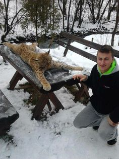 Ladies and gentlemen, I present to you the Bosnian idiot of the year! He killed one of the last 130 lynx in this part of Europe!